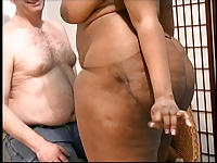 Interracial obsession with a Black BBW ass.