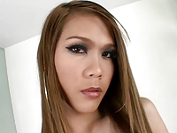 Ladyboy Dolls asian shemale compilation