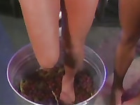 lesbians grape stomping and, sugar feets in fishnets, grape juice between butts
