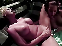 thick massive pussy lips wrapping silver dildo
