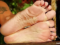 Feet That Dance To Elmer's Tune: Jenna Presley