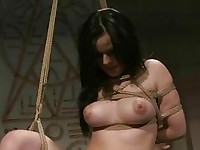 Mistress playing with sex slave