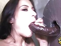 Tattooed dark haired pornstar sucks black glory hole dick