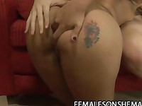 Horny shemale Sandy Lopez wants wet female pussy