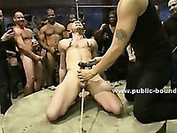 Shaved strong gay boy bound in the middle of group of dirty perverts in nasty sex video
