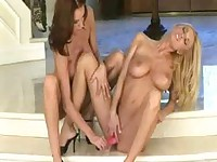 Two hot lesbians and one pink dildo